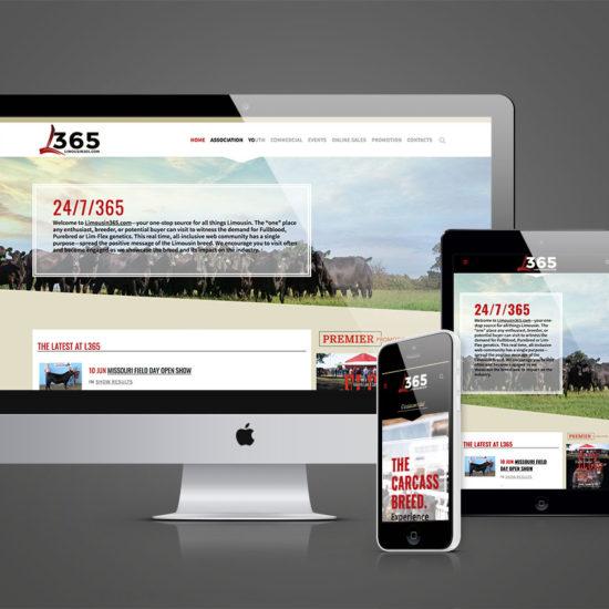 Limousin365 Responsive Website Design