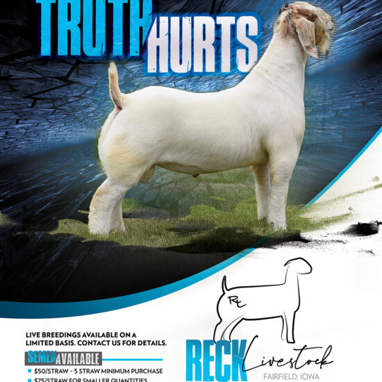 Reck Livestock Truth Hurts