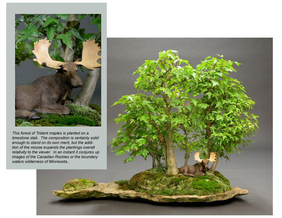 Figurines And Bonsai Bonsai Learning Center