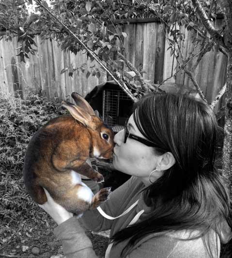 Spirit Animal Bunny Rabit