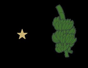 Logo Color Background 1100 x 35 6 300x232
