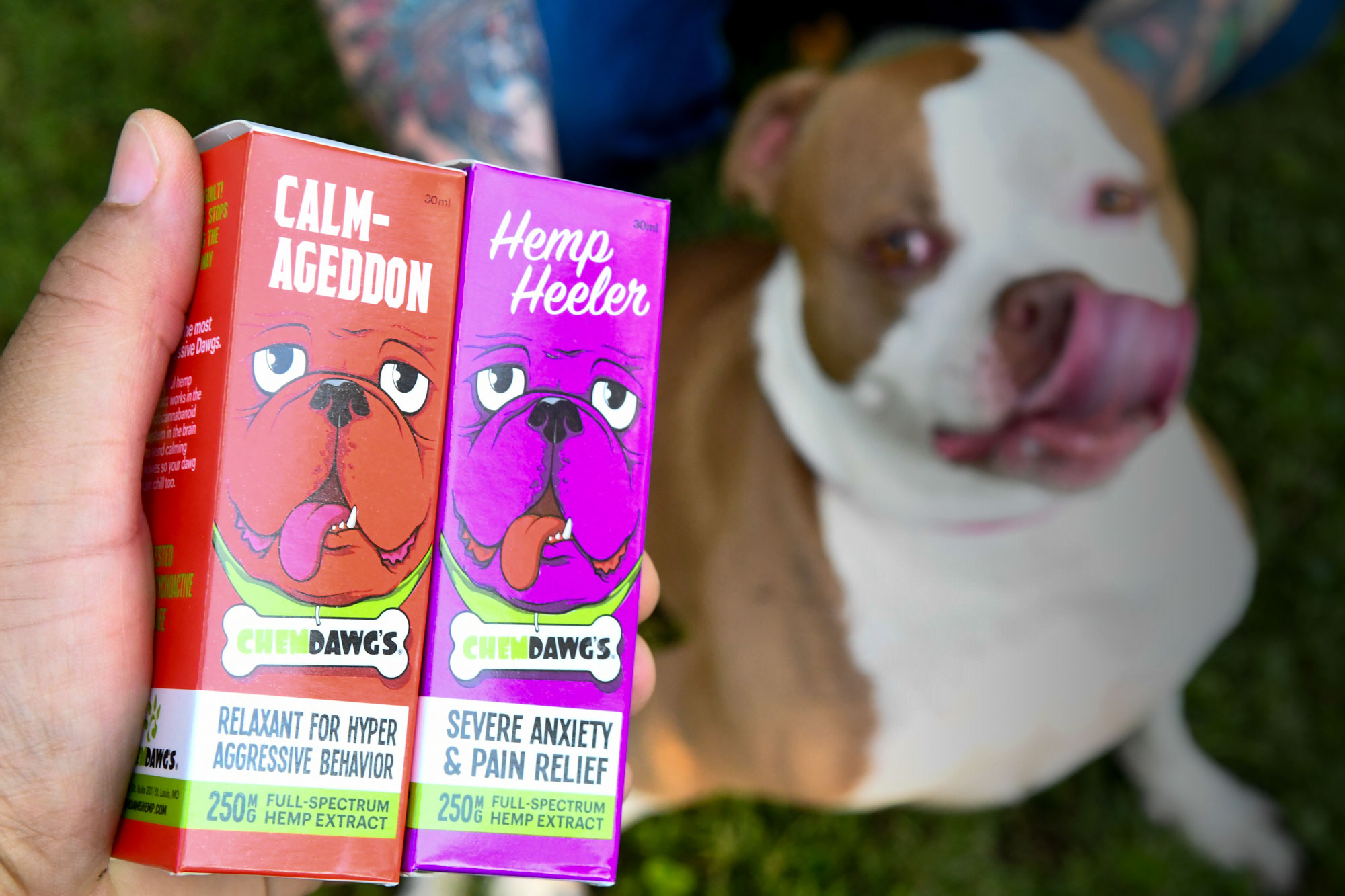 Read these Chemdawg Faqs and find out how our hemp infused dog products will help your pups pain and anxiety.