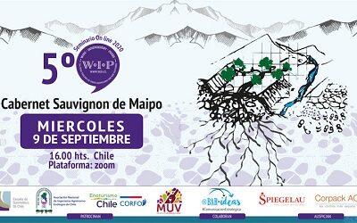 5º seminario online de WIP 2020 explorará cabernet sauvignon de Maipo Andes
