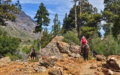 Reserva Nacional Río de Los Cipreses volvió a abrir sus puertas al público