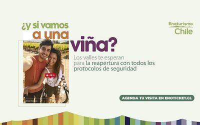 Enoturismo Chile lanza campaña para reactivación del turismo enológico