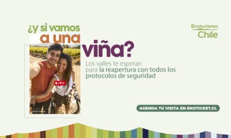 Llamado a visitar las viñas de Chile