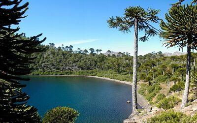 Sernatur abre postulaciones para primera evaluación de guías de turismo registrados