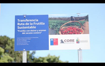 """Proyecto """"Ruta de la frutilla sustentable"""""""