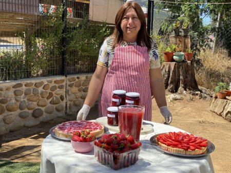 Ruta de la frutilla sustentable