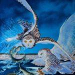 Snowy Owl Strike