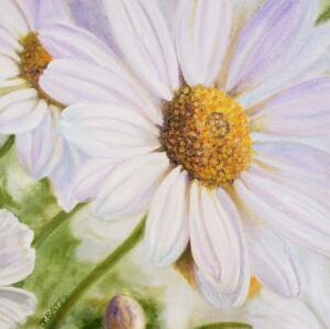 NEW BEGINNINGS  |  Oil on canvas  |  12 x 12  | 13 x 13 Framed  |  $850