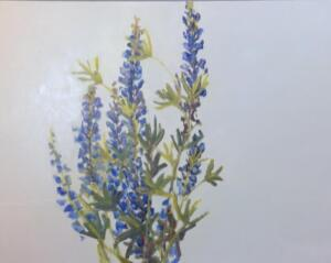 Wild Lupin  |  Oil on canvas  | 24 x 31  |  24 x 31  |  25 x 32 Framed  |  $2400
