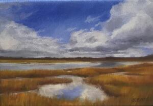 CAPTURED SKY  |  5 x 7  |  Oil on canvas  |  6.5 x 8.5 Framed  |  $350