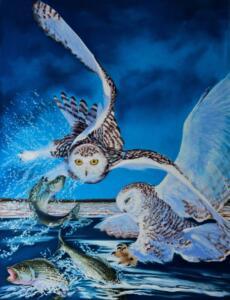 SNOWY OWL STRIKE  |  26 x 20  |  Pastel on sanded paper  |  33 x 27 Framed  |  $1450
