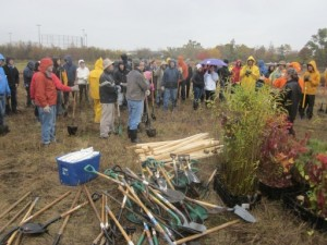 G.E. Power & Water Day of Caring tree planting Oct. 2014 002