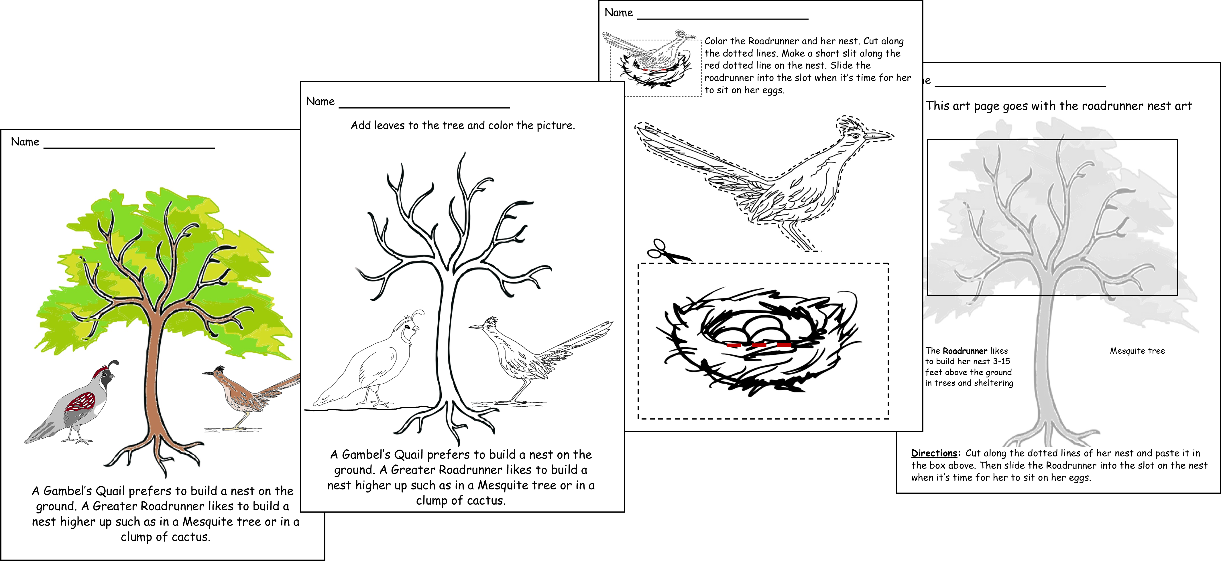 black and white drawings about The Greater Roadrunner