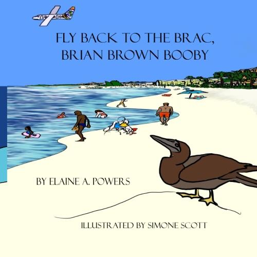book cover, blue sky, bird a brown booby is on beach near ocean