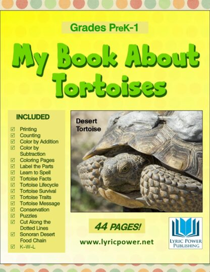 book cover book about tortoise preK-1st grade