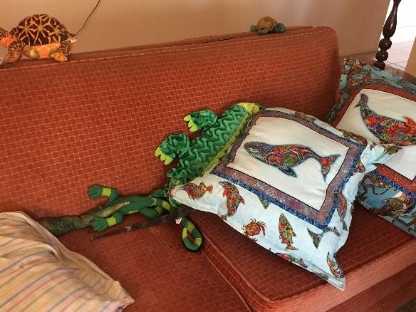 tail of rhino iguana hiding