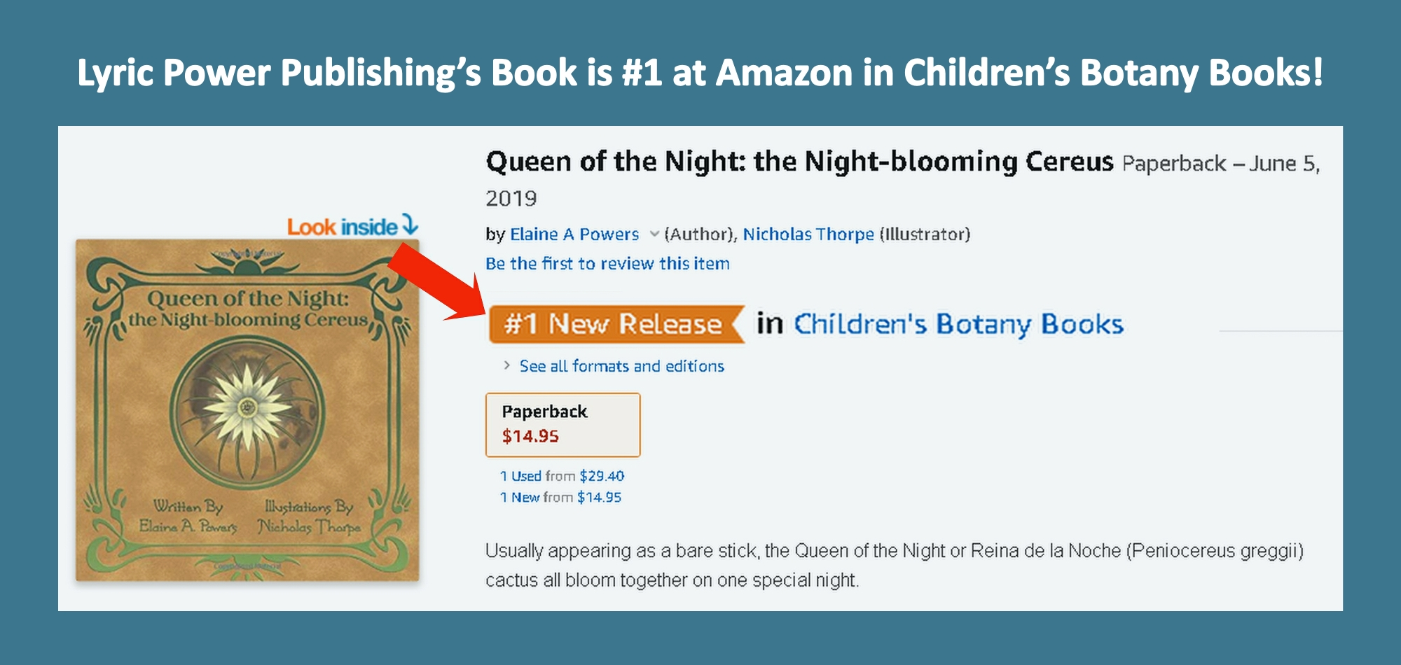 Graphic of No 1 book at Amazon