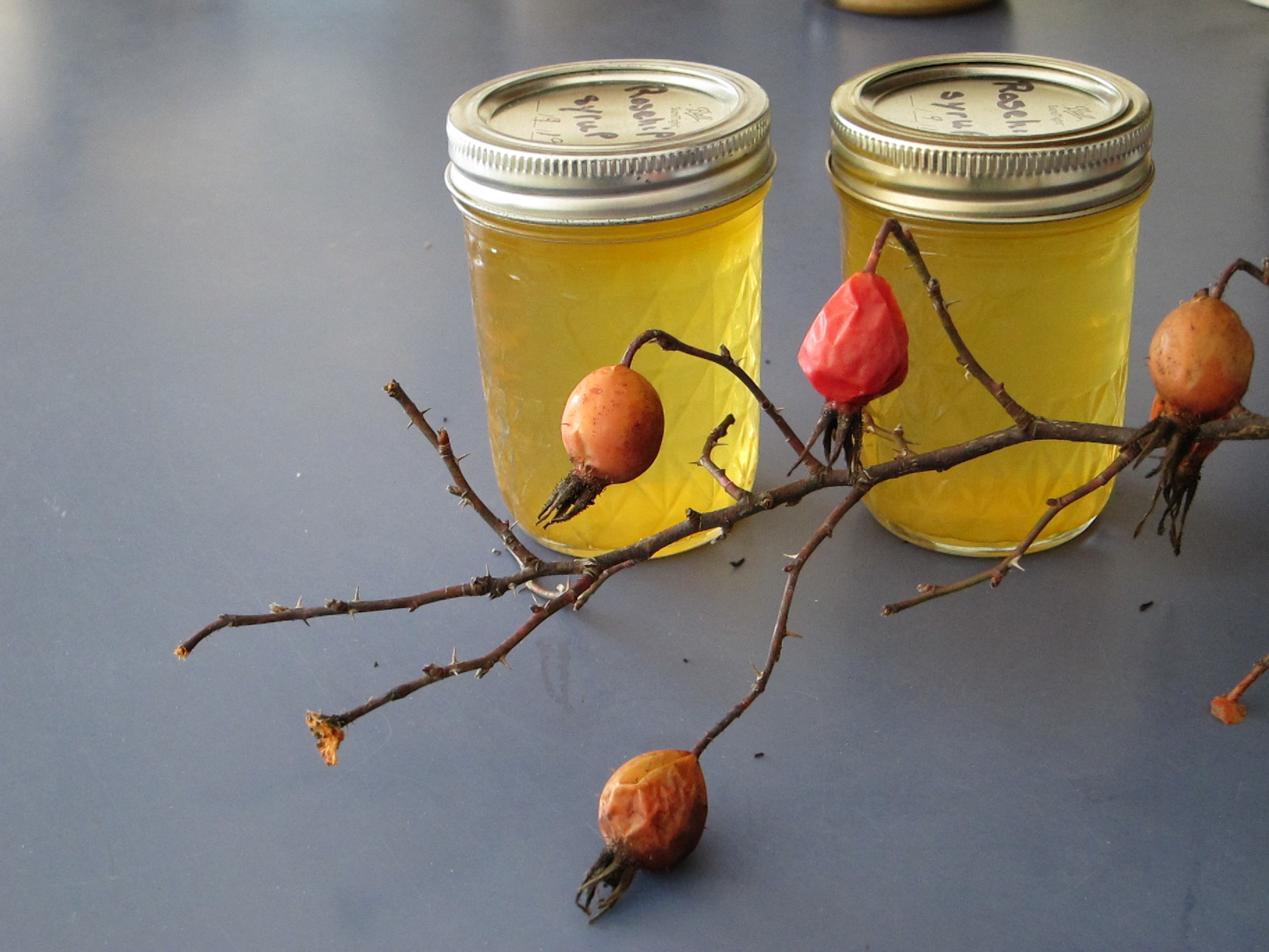jars with yellow syrup and rose hips