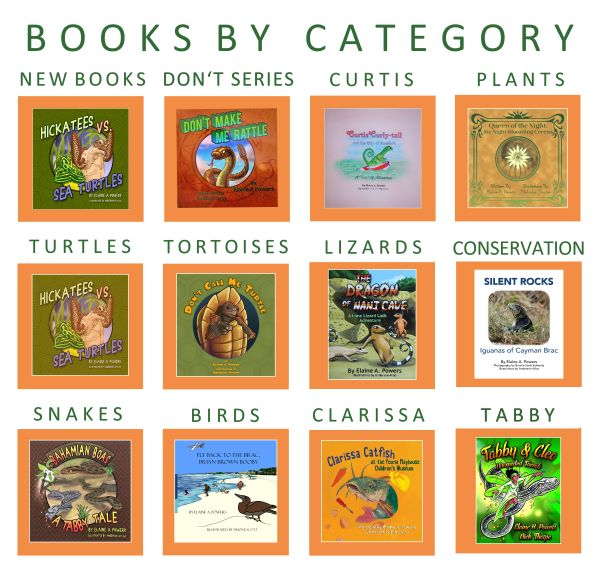 infographic of books by category