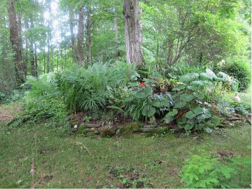 photo of a flower garden planted around a tree trunck