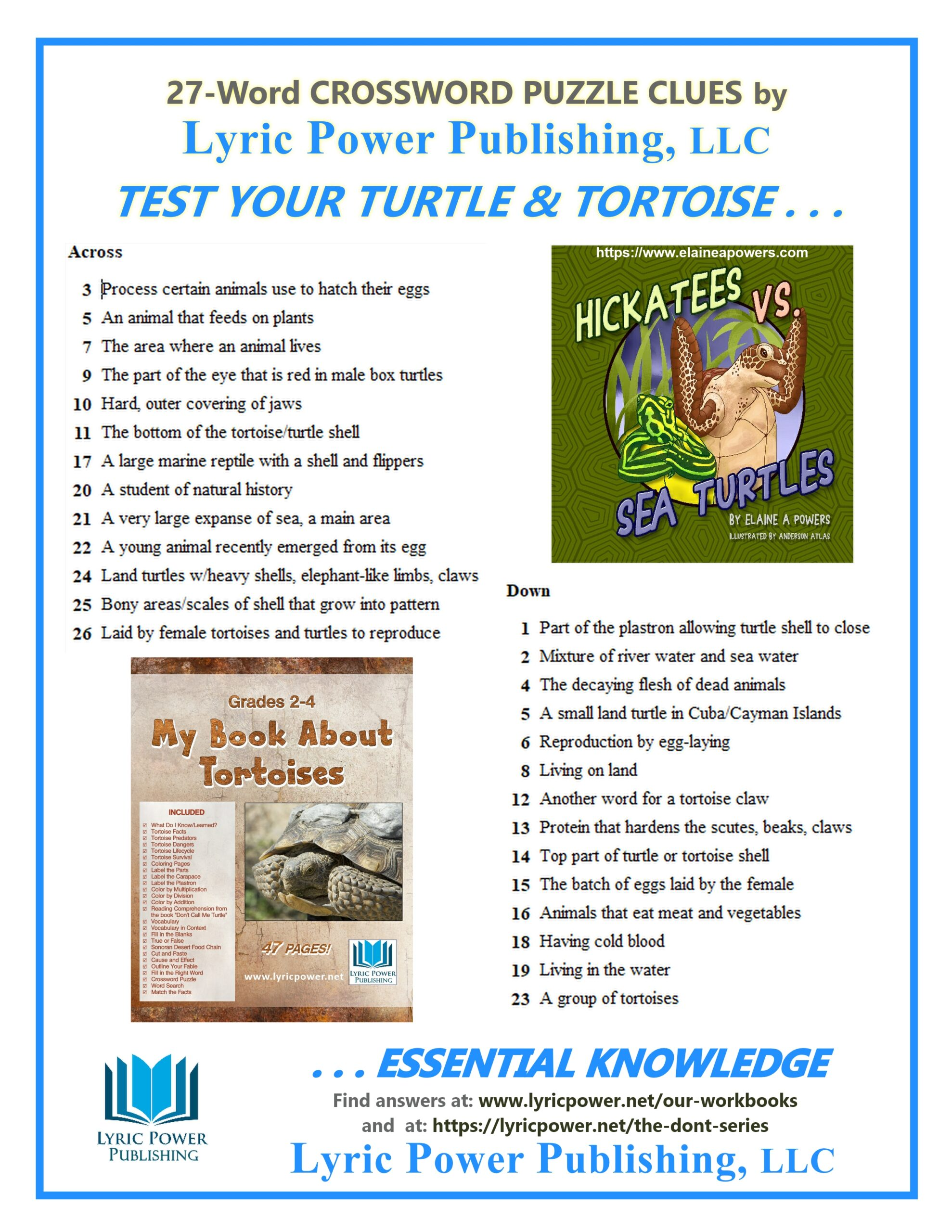 Clues for Crossword Puzzle Tortoises and Turtles