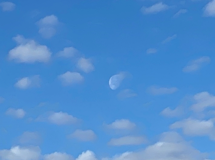 photo of moon in the day time
