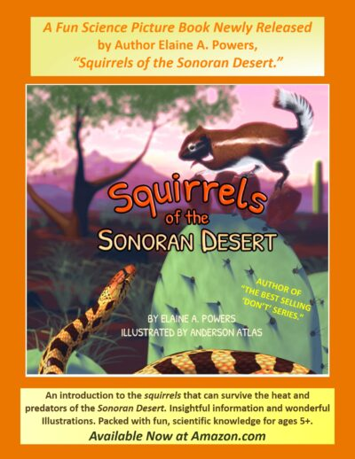 graphic for Squirrels of the Sonoran Desert