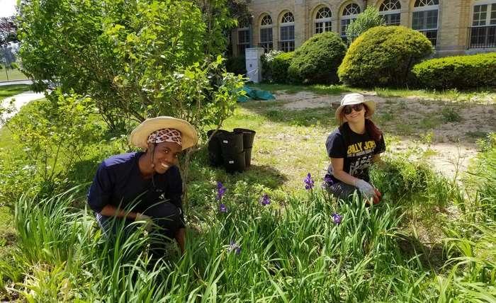 Land Ecology Interns Join Us