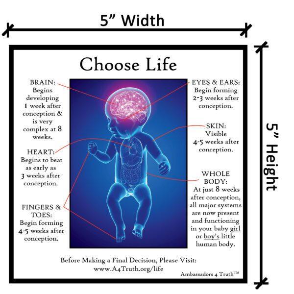 Choose Life Gospel Tract_Dimensions