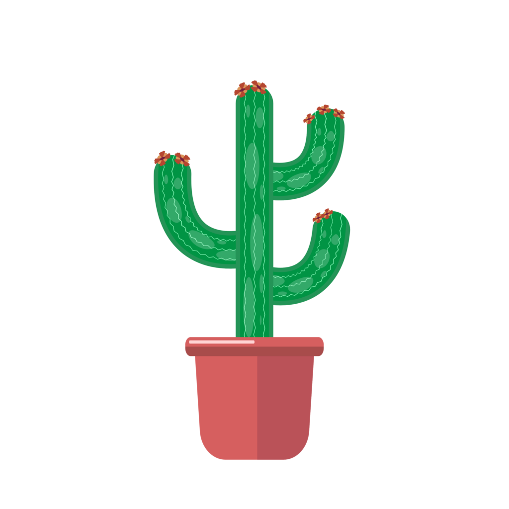 A vector image of a household cactus plant