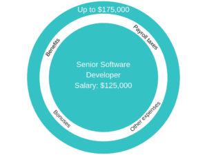 Software developer true employee cost image