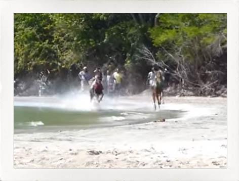 activities-horse-racing