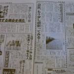 夕刊フジ11月12日