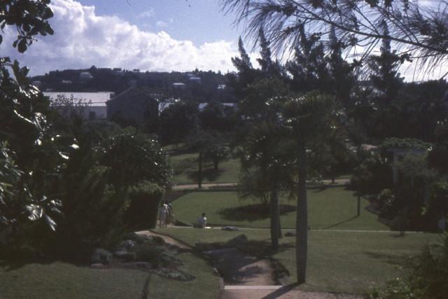 Bermuda67 004