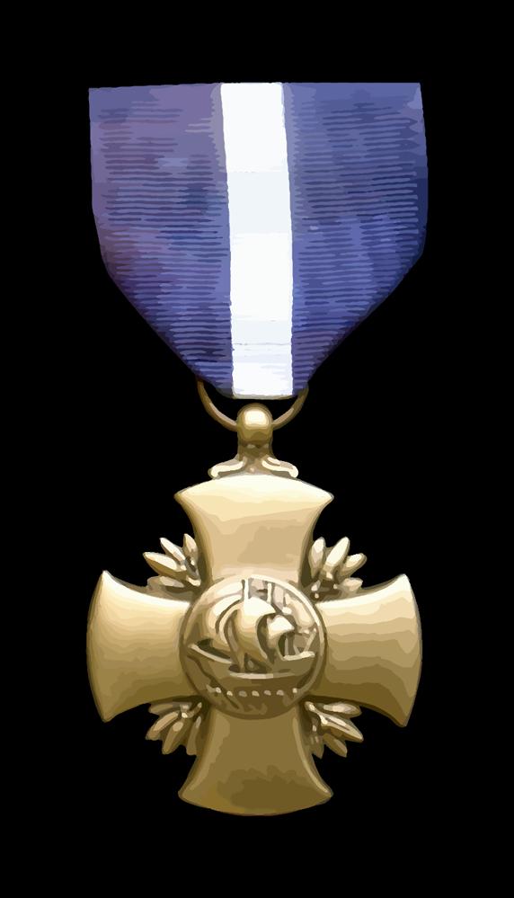Navy_Cross_Medal 1000