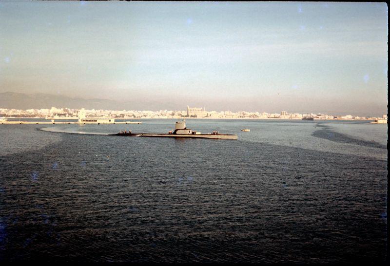 Sub in Palma