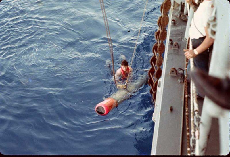 slide 5 swimmer recovering practice shot 1969