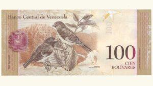 Venezuela 100 Bolívares Fuertes, Septiembre-03-2009, Serie C8 Muestra Sin Valor UNC