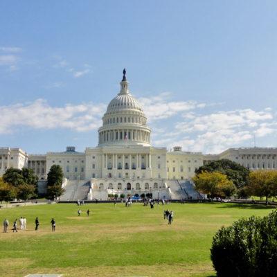 Nancy Organizes Trip to Women's March in DC