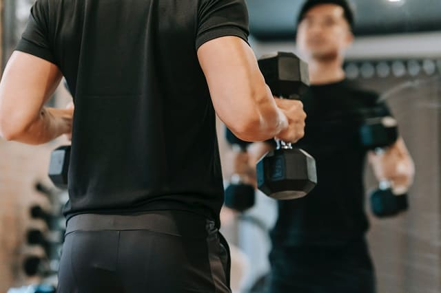 bicep workout routines