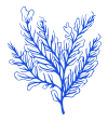 Seaweed-Icon-2_Blue-1
