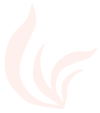 Seaweed-Icon_Cream