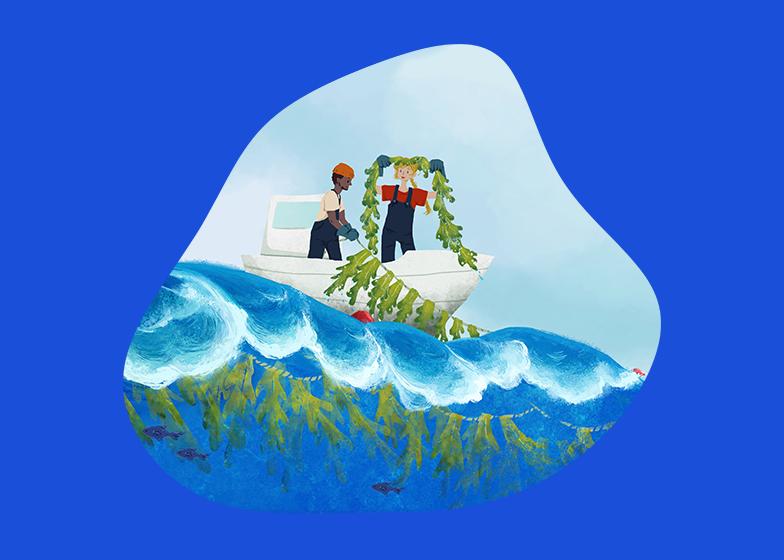 Sway-Seaweed-Farming
