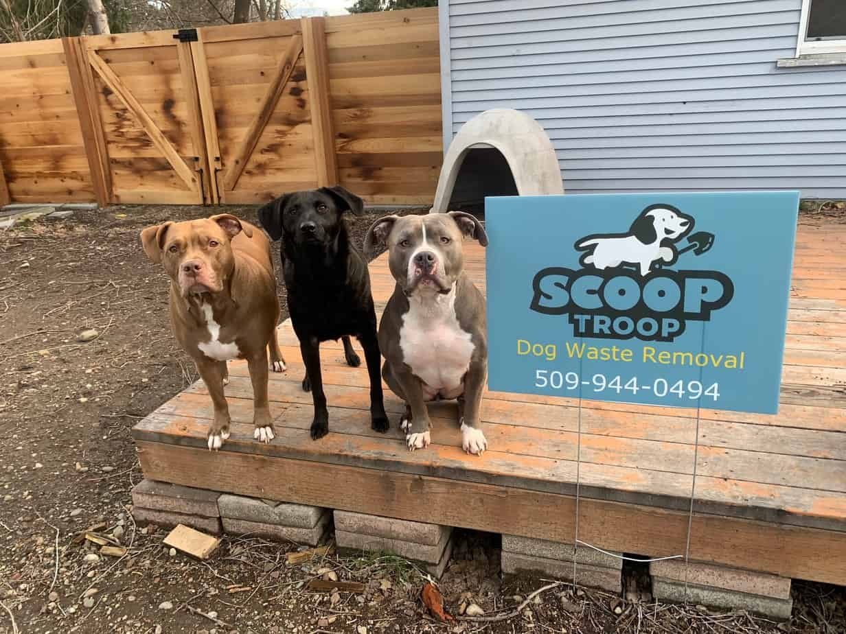 The scoop troop dog trio standing next to a pet waste removal sign.