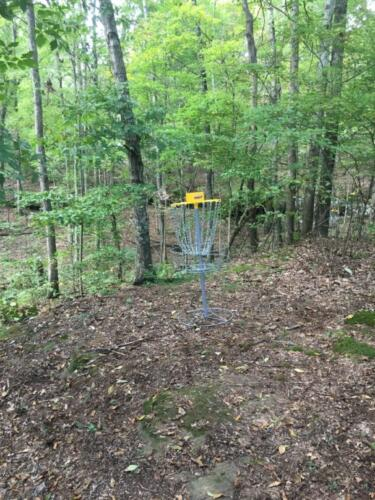 Hole 11 basket
