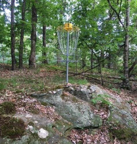 Hole 8 basket
