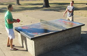 Park Pong Table